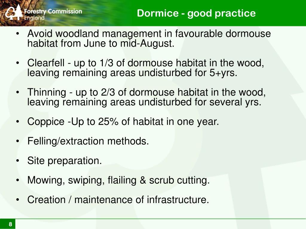 Dormice - good practice