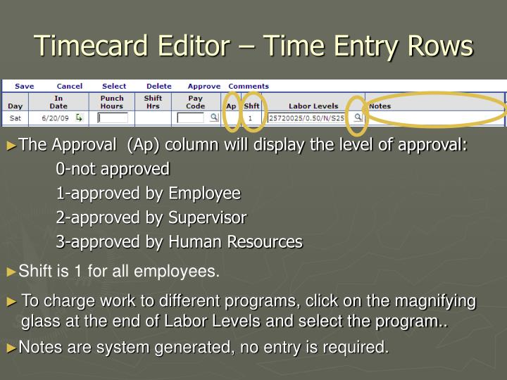 Timecard Editor – Time Entry Rows