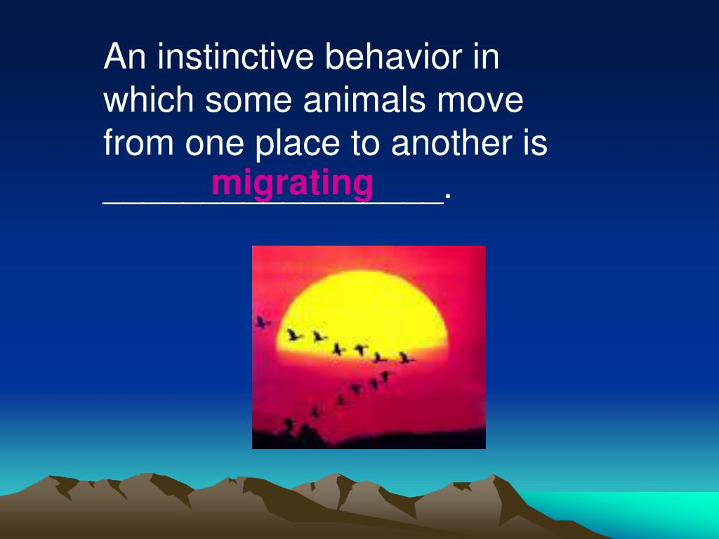 An instinctive behavior in which some animals move from one place to another is _________________.