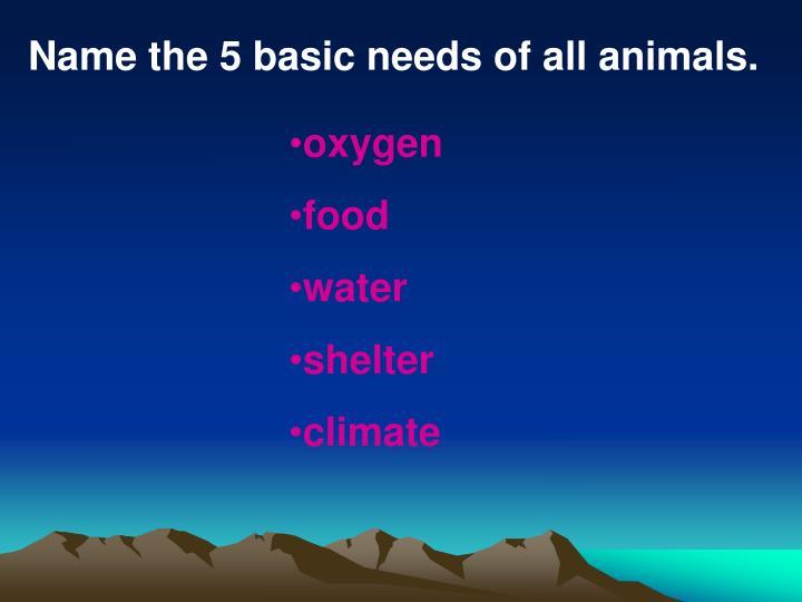 Name the 5 basic needs of all animals.