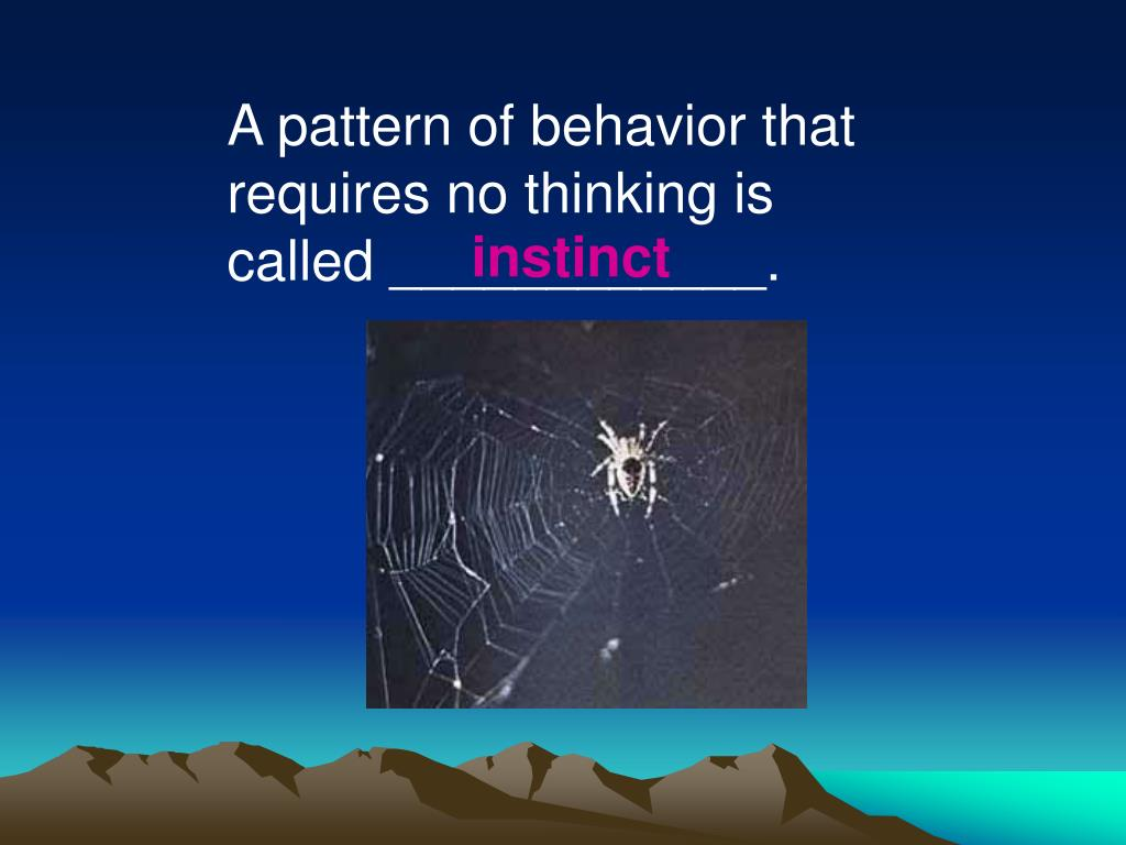 A pattern of behavior that requires no thinking is called ____________.