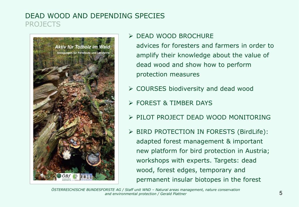 DEAD WOOD AND DEPENDING SPECIES