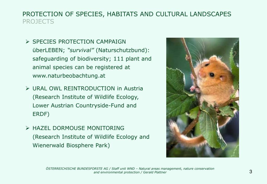 PROTECTION OF SPECIES, HABITATS AND CULTURAL LANDSCAPES