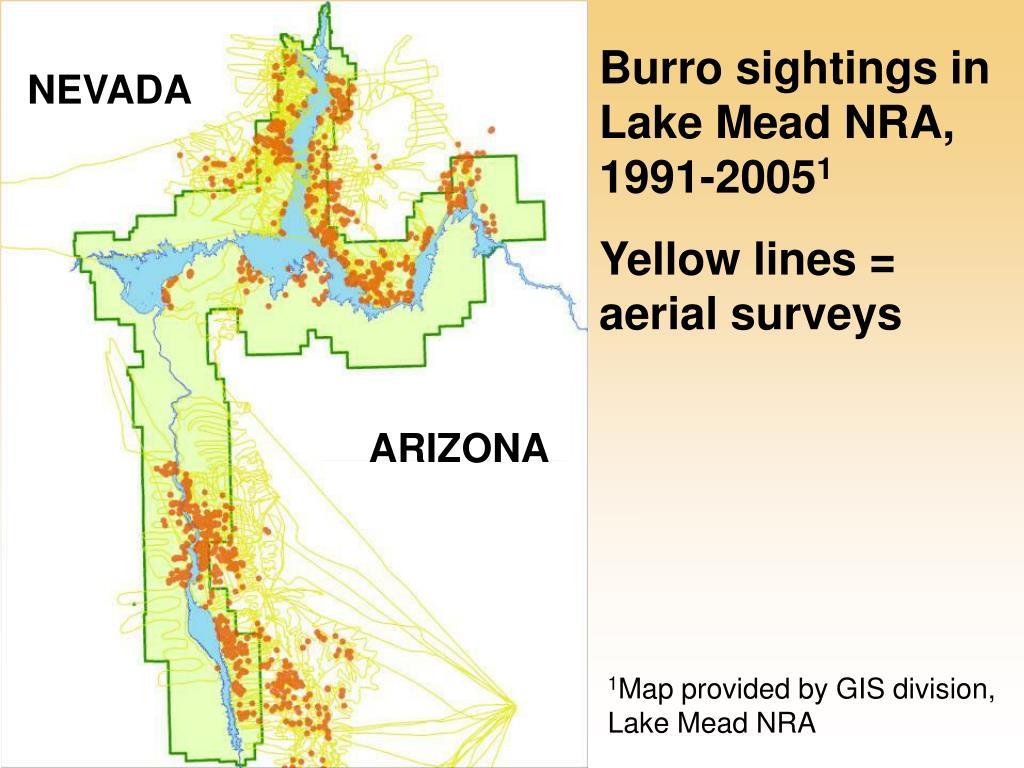 Burro sightings in Lake Mead NRA, 1991-2005