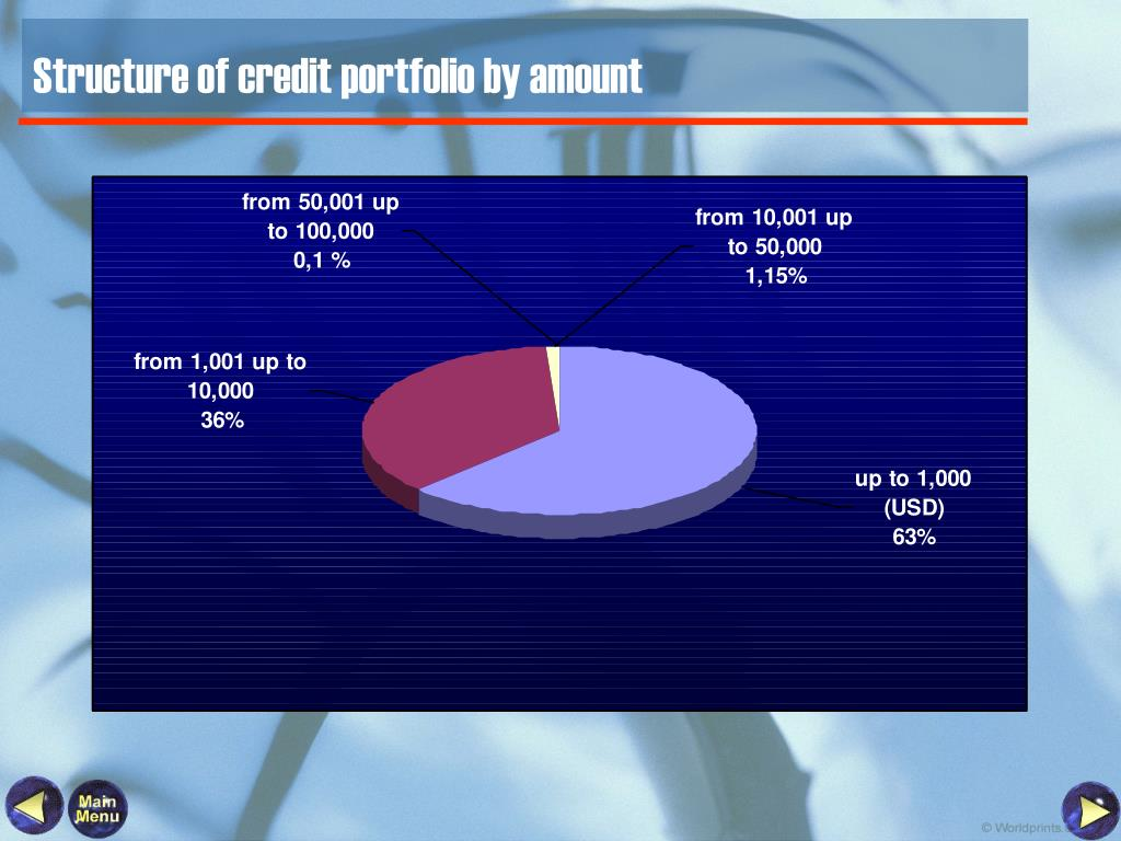 Structure of credit portfolio by amount