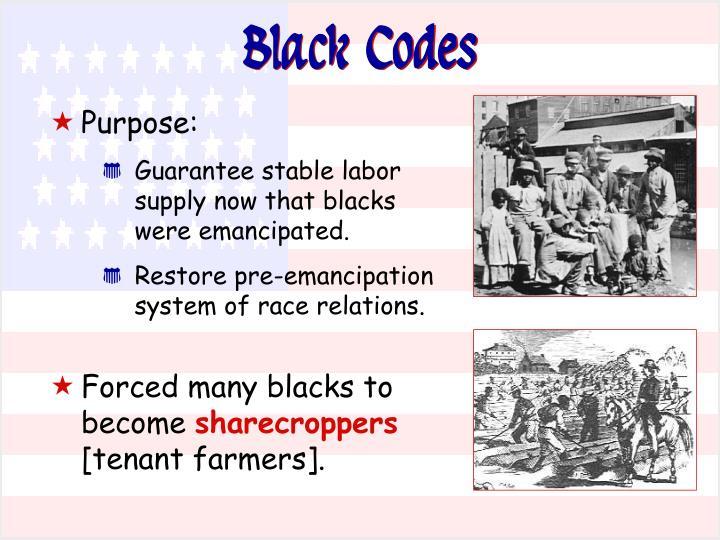 Black Codes