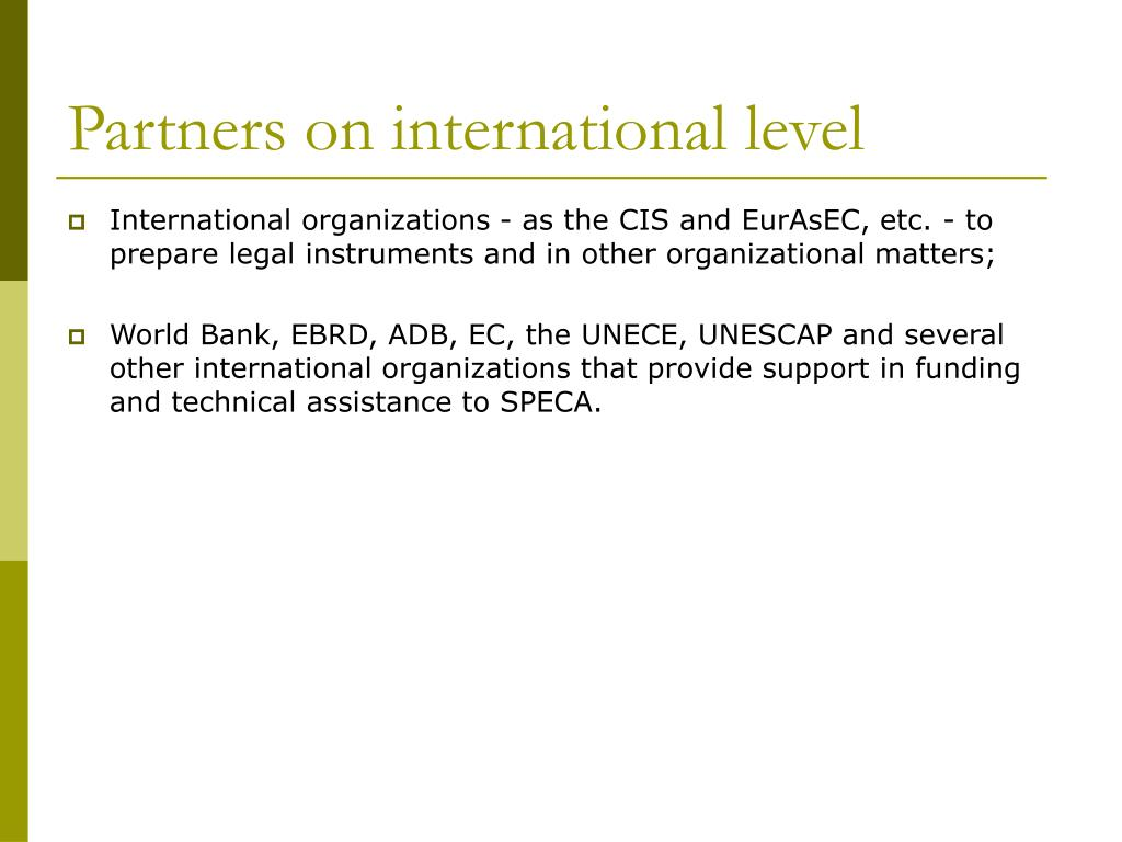 Partners on international level