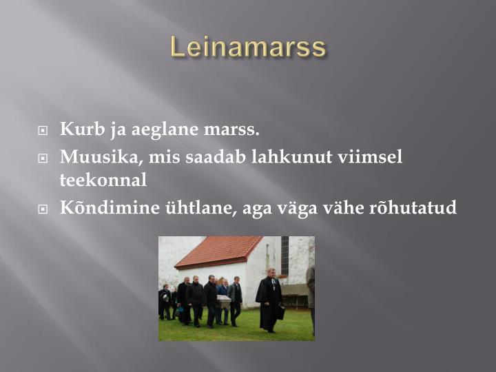 Leinamarss