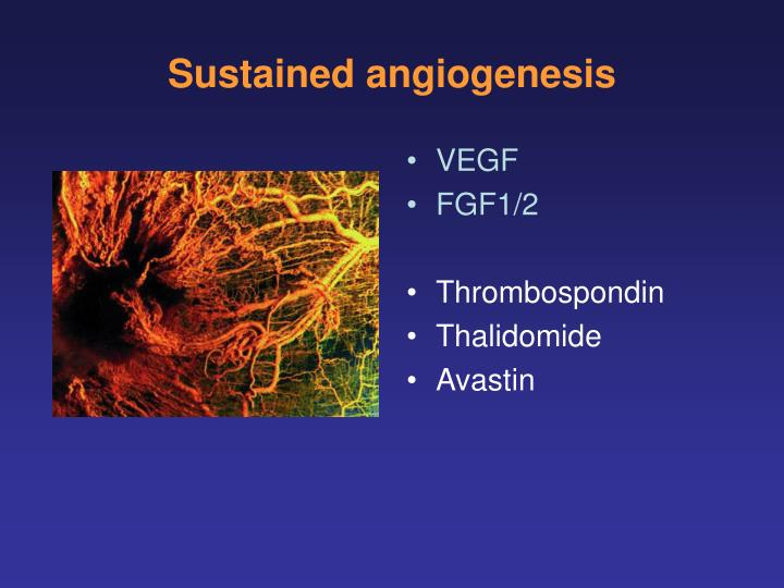 Sustained angiogenesis
