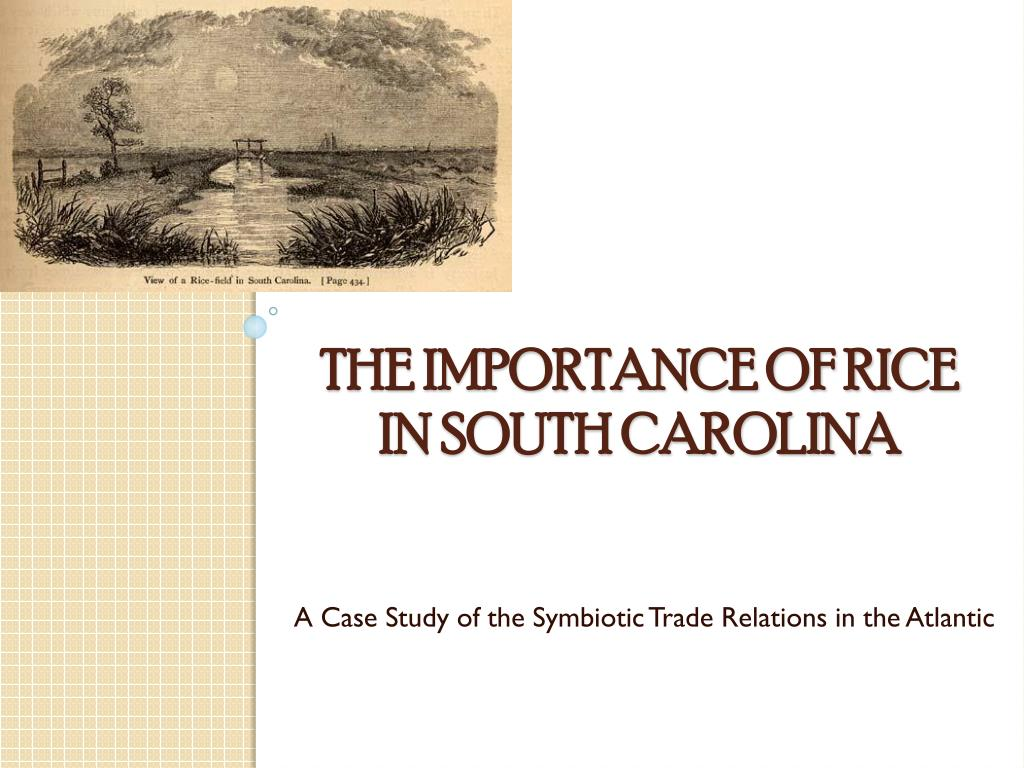 A Case Study of the Symbiotic Trade Relations in the Atlantic