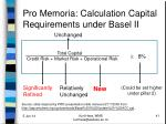 pro memoria calculation capital requirements under basel ii