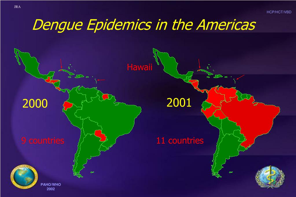 Dengue Epidemics in the Americas