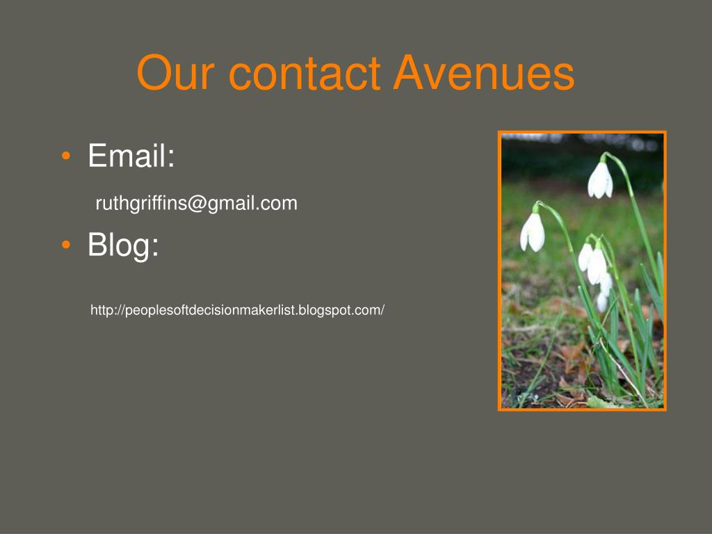 Our contact Avenues