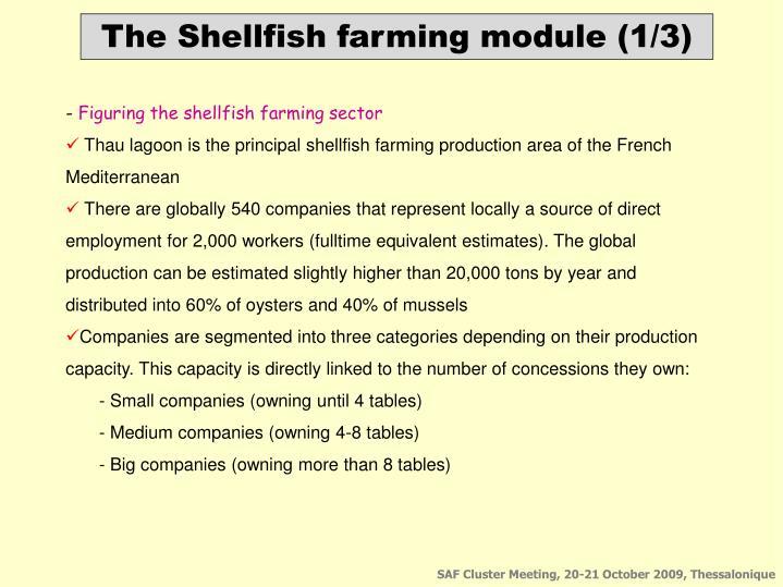 The Shellfish farming module (1/3)
