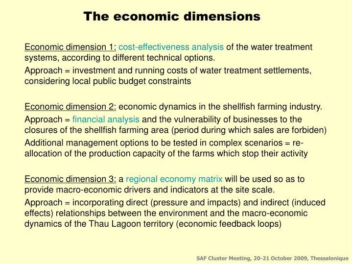 The economic dimensions