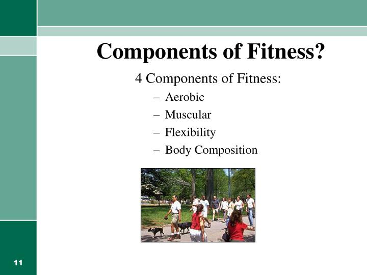 Components of Fitness?