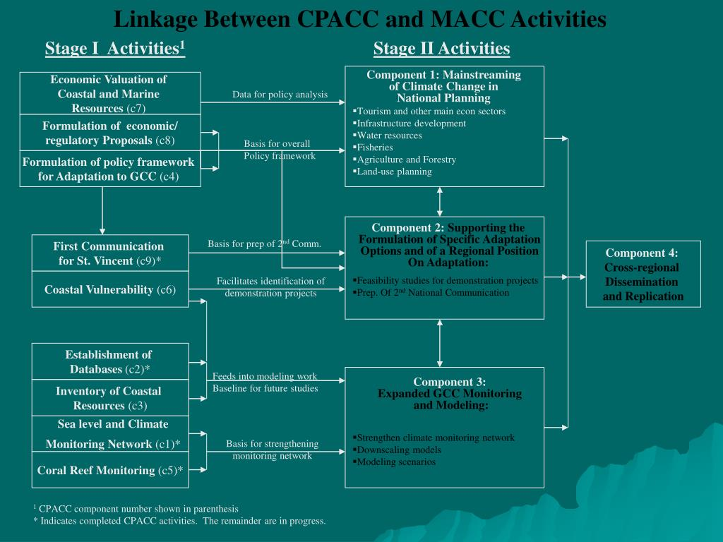 Linkage Between CPACC and MACC Activities