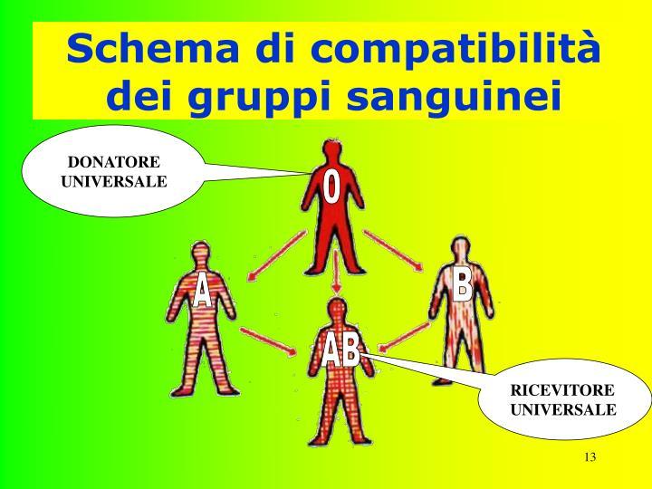 Schema di compatibilità dei gruppi sanguinei