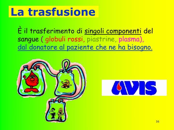 La trasfusione