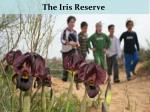 the iris reserve