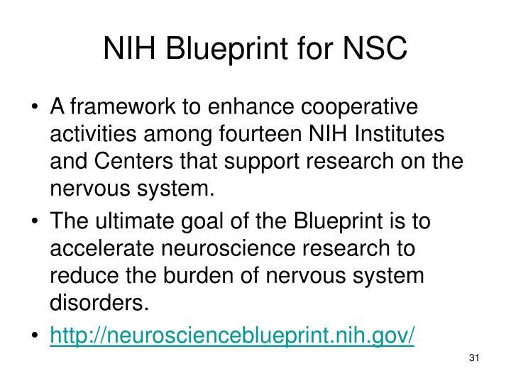 NIH Blueprint for NSC