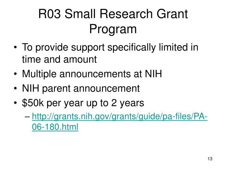 R03 Small Research Grant Program