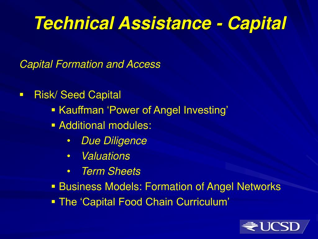 Technical Assistance - Capital