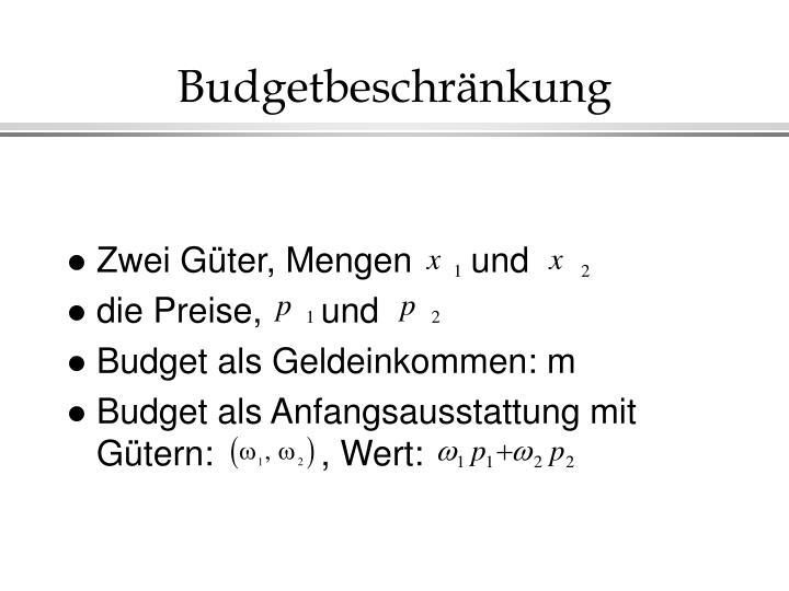 Budgetbeschränkung