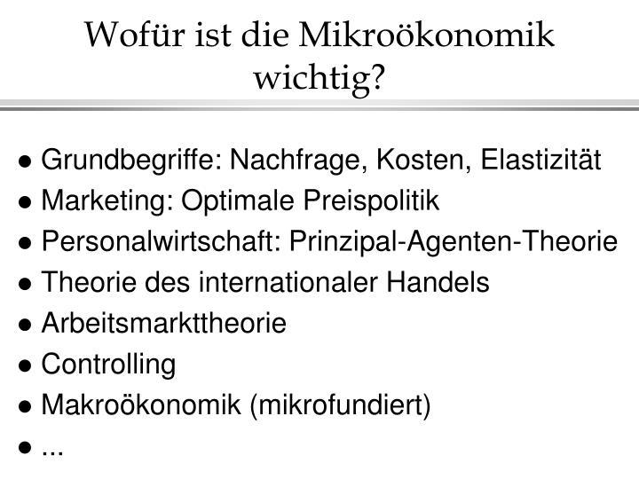 Wofür ist die Mikroökonomik wichtig?