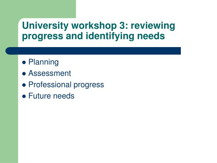 University workshop 3: reviewing progress and identifying needs