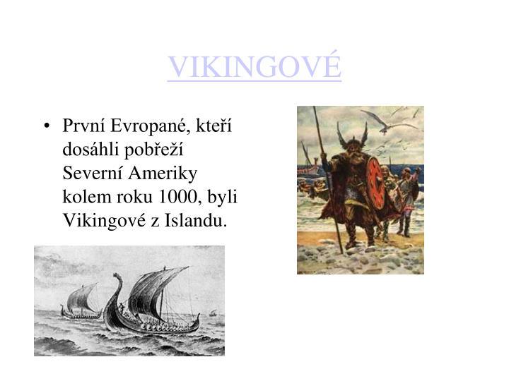 První Evropané, kteří dosáhli pobřeží Severní Ameriky kolem roku 1000, byli Vikingové z Islandu.