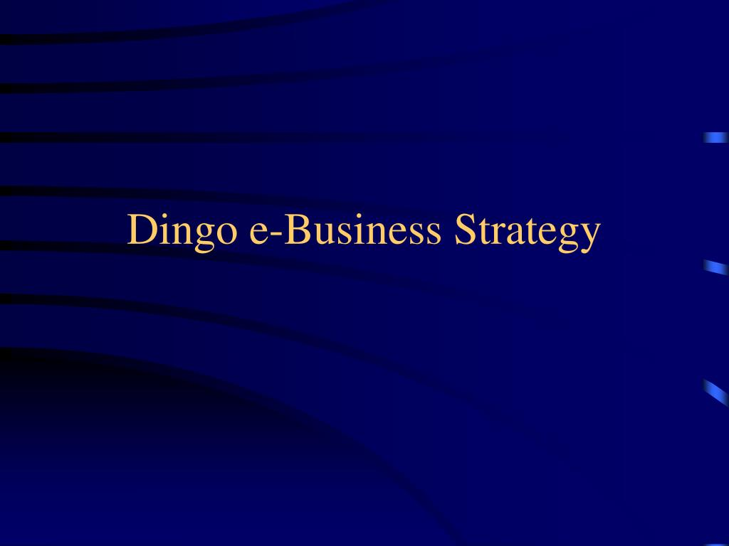 Dingo e-Business Strategy