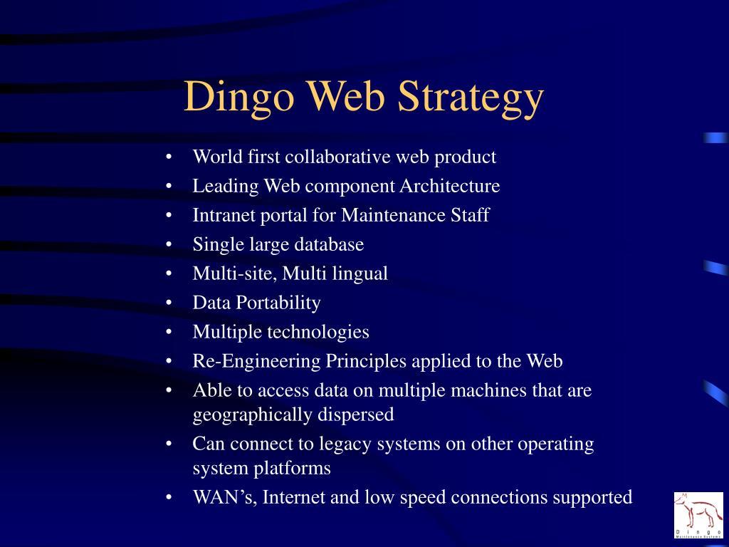 Dingo Web Strategy