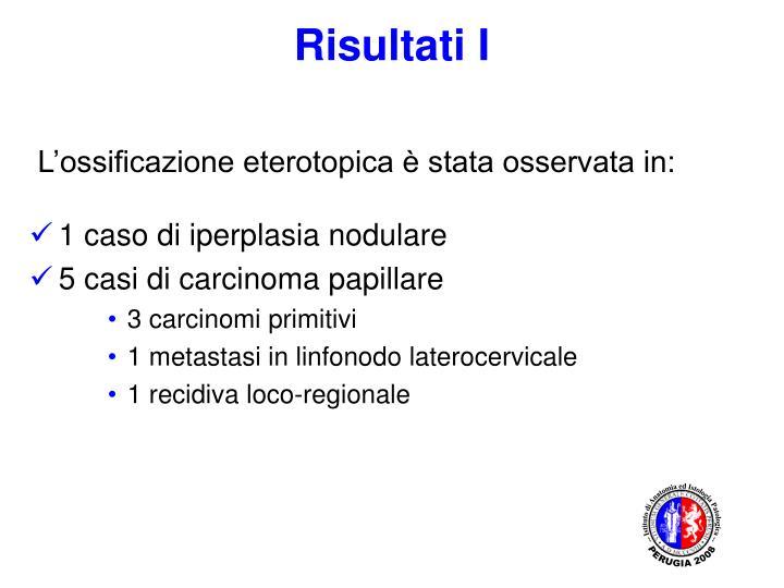-- Istituto di Anatomia ed Istologia Patologica --