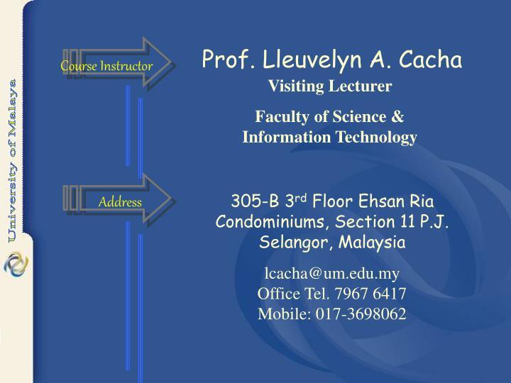 Prof. Lleuvelyn A. Cacha