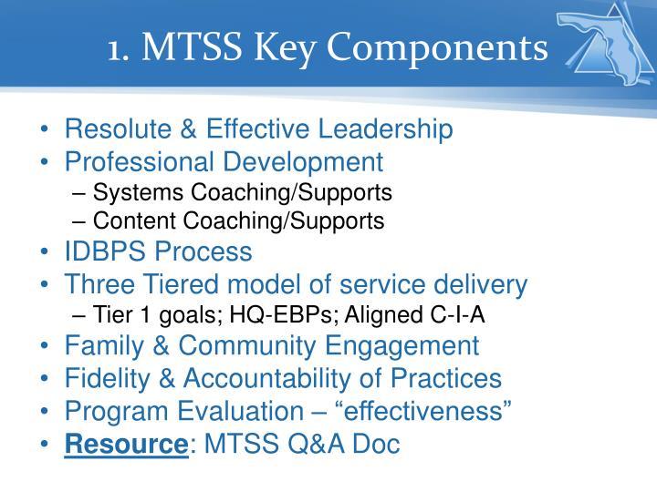 1. MTSS Key Components