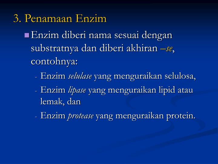 3. Penamaan Enzim