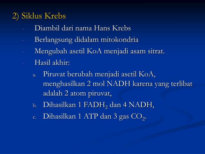 2) Siklus Krebs
