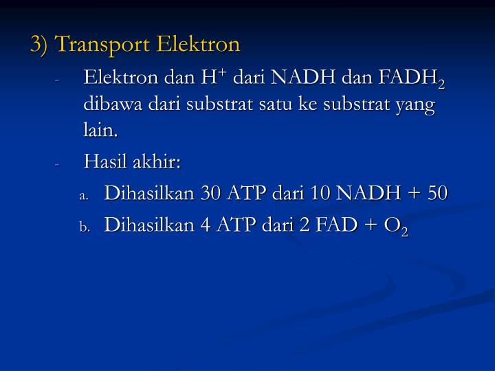 3) Transport Elektron
