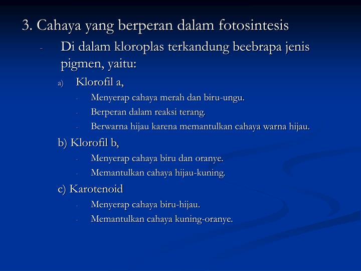 3. Cahaya yang berperan dalam fotosintesis