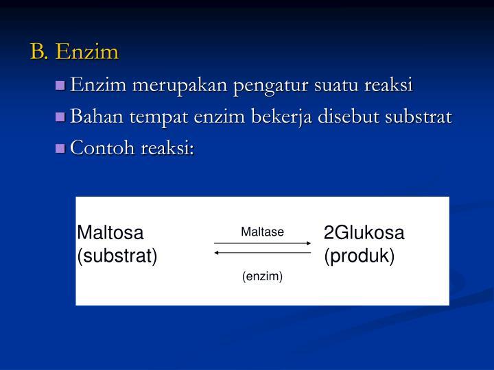 Maltosa2Glukosa