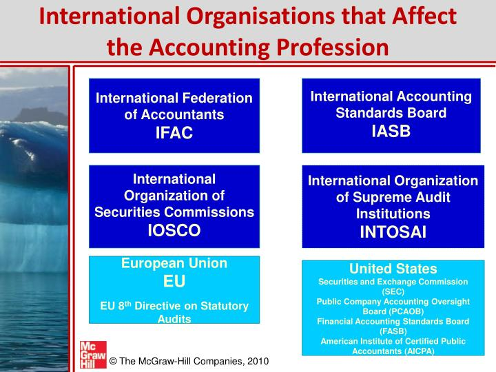 International Organisations that Affect the Accounting Profession