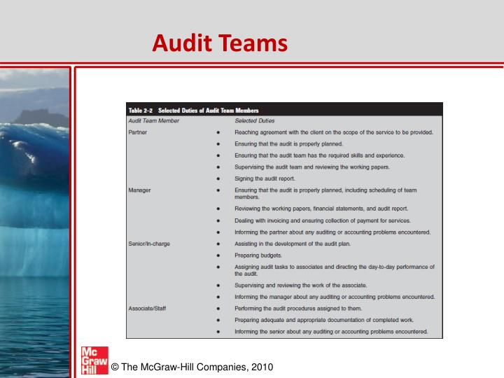 Audit Teams
