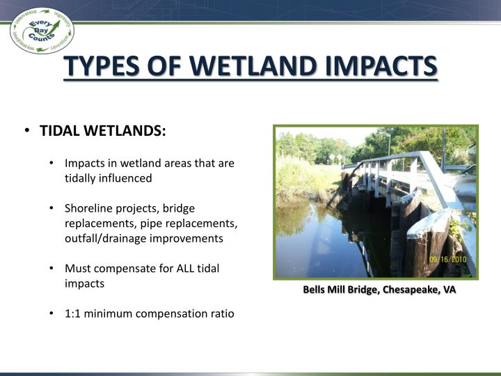 TYPES OF WETLAND IMPACTS