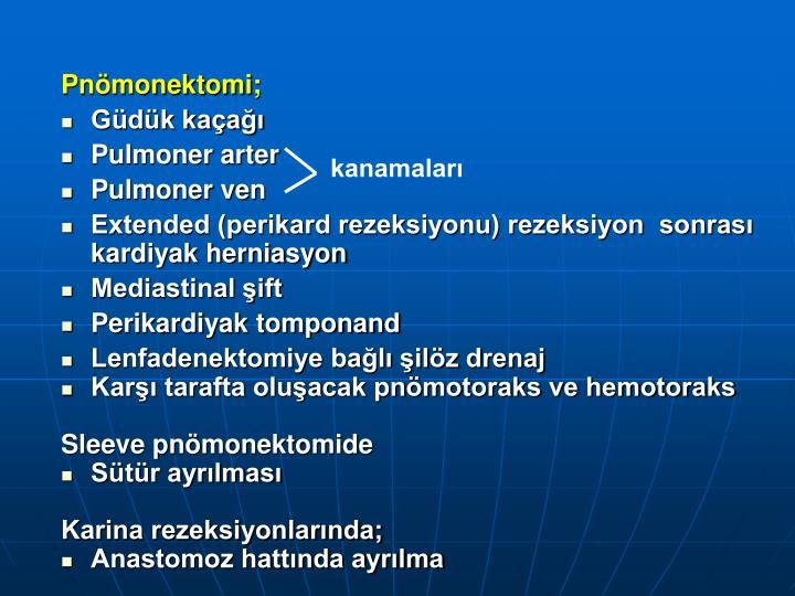 Pnömonektomi;