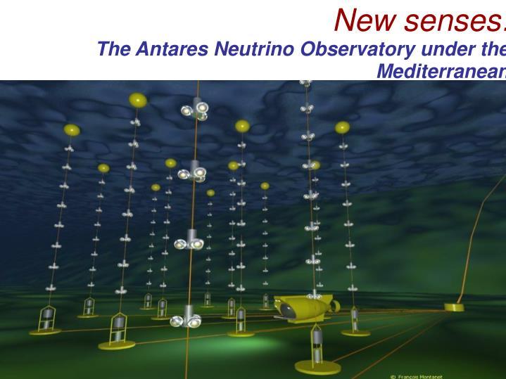 New senses: