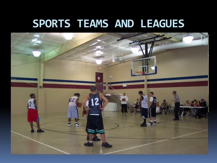 SPORTS TEAMS AND LEAGUES