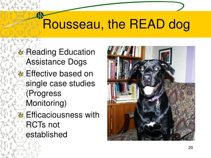 Rousseau, the READ dog