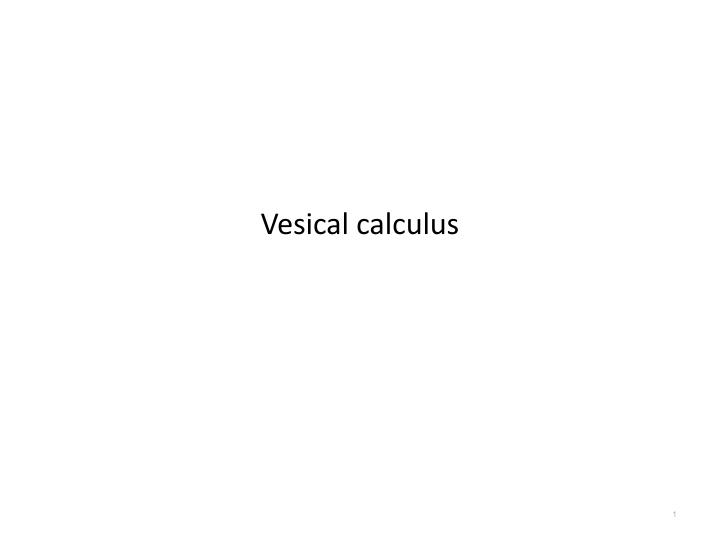 Vesical calculus