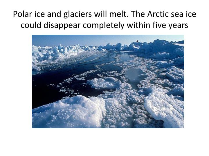 Polar ice and glaciers will melt. The Arctic sea ice could disappear completely within five years